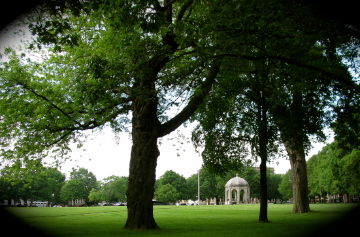 Salem 101: A Walk around Salem Common (4/6)