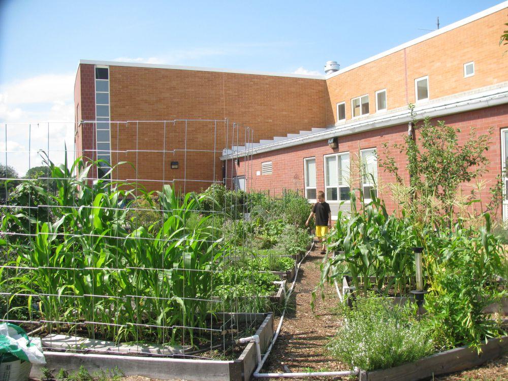 Green in the Middle, A Salem Public Schools Garden Program (2/6)