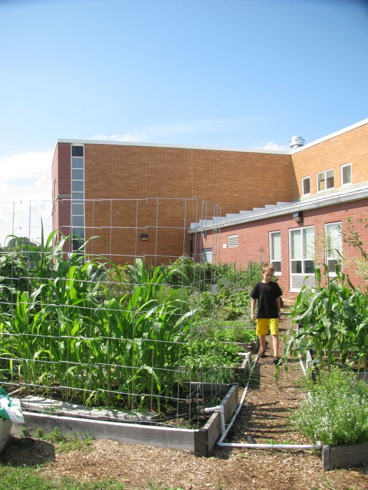 A Few Thoughts About Garden-Based Learning