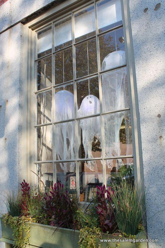 Halloween In Salem- Saturday Morning Stroll